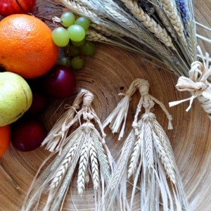 Three stalks of locally collected barley, tied together with rafia are used to represent the cutting down of John Barleycorn at Mabon.